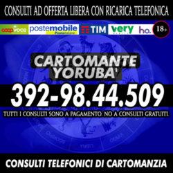 cartomante-yoruba-457