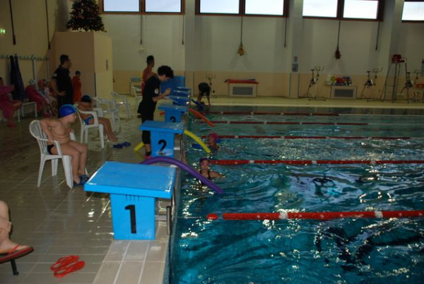 Piscina ciro marina al via la seconda gara di nuoto - Nuoto in piscina ...