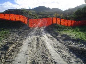 Strada alla discarica di Scala Coeli (5)