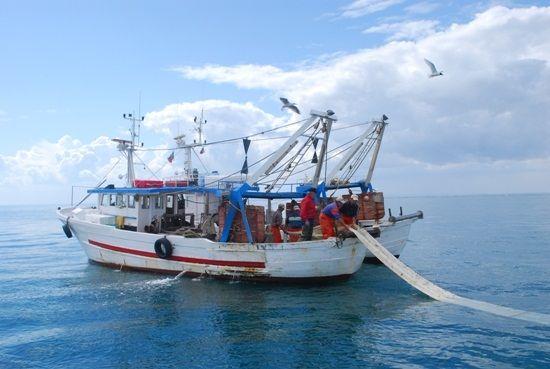 Pesca fantastica simulatore da pesca in linea