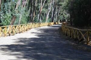 Staccionata-in-legno-Pineta-Cirò-Marina