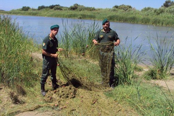 Scoperta rete da pesca lunga 800 metri nel fiume tacina for Rete da pesca arredamento