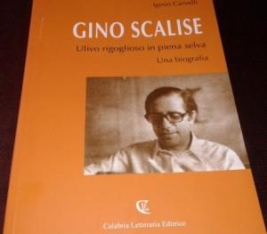 Biografia Gino Scalise
