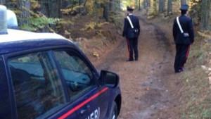 carabinieri-verzino-bosco