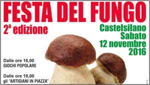 festa_del_fungo_castelsilano