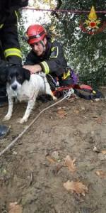 I Vigili del Fuoco salvano un cucciolo caduto in un dirupo di oltre 100 metri1