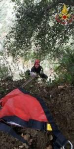 I Vigili del Fuoco salvano un cucciolo caduto in un dirupo di oltre 100 metri2