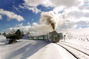 La Ferrovia Silana nell'elenco delle ferrovie turistiche