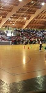 Da una Regione in Movimento a Sport di Classe al Palazzetto di Cirò Marina8