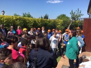 """Gli studenti dell'istituto """"Nicotera – Costabile"""" di Lamezia Terme al Parco delle Biodiversità di Catanzaro"""