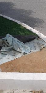 Città Pulita- il randagismo un problema serio a Cirò Marina2