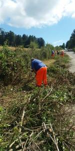Campana Strade provinciali, manutenzione in corso (1)