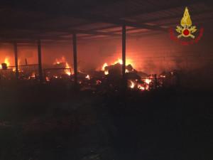 Incendio in una azienda agricola a Rocca di Neto, salvate 750 pecore dai Vigili del Fuoco2