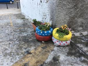 Un fiore anzichè spazzatura, rendiamo bella la nostra Crotone (1)