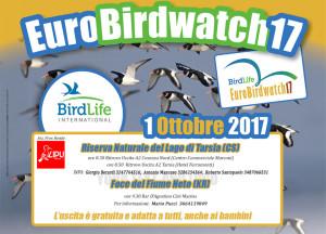Torna l'Eurobirdwatch in Calabria, il più grande evento europeo nelle riserve della Lipu1