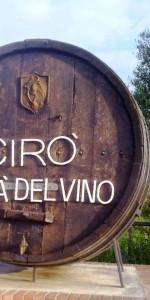 50 soveratesi in visita nei comuni di Cirò, Umbriatico e Cirò Marina (4)