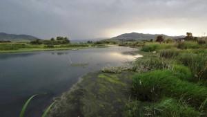 Discarica Scala Coeli i comitati chiedono un incontro urgente all'assessore regionale all'ambiente - la valle del nika