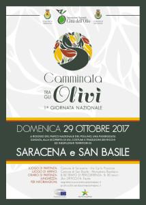 San Basile e Saracena gemellaggio tra gli olivi