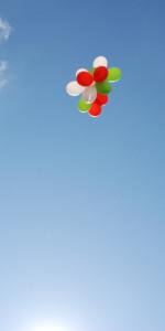 4 Novembre, Cirò Marina celebra la giornata dell'unità nazionale e delle forze armate (174)