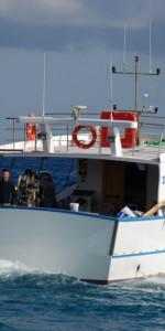 4 Novembre, Cirò Marina celebra la giornata dell'unità nazionale e delle forze armate (81)