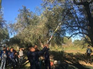 All'Istituto Tecnico Agrario di Rossano una giornata sulla biodiversità (1)