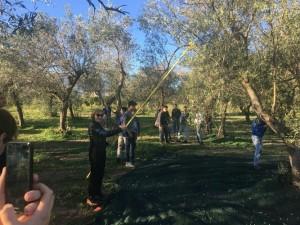 All'Istituto Tecnico Agrario di Rossano una giornata sulla biodiversità (3)