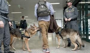 Arrestato spacciatore di stupefacenti vicino alle scuole cittadine