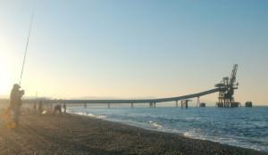 Campionato Provinciale Pesca Sportiva di Surf Casting sulle spiagge di Punta Alice a Cirò Marina (3)