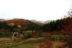Il Parco Nazionale della Sila al fianco della popolazione e del sindaco di Cotronei