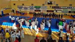 Pioggia di medaglie per il Team di TaeKwonDo del M° Martino al Campionato Interregionale di 'Forme' (3)
