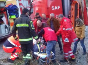 Cade da un albero, soccorso dai Vigili del Fuoco (2)