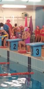Centinaia di nuotatori di tutte l'età della Scuola Neysis di Cirò Marina per la gara di fine anno (102)
