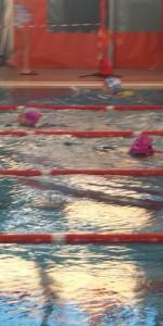 Centinaia di nuotatori di tutte l'età della Scuola Neysis di Cirò Marina per la gara di fine anno (108)