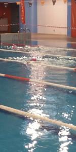 Centinaia di nuotatori di tutte l'età della Scuola Neysis di Cirò Marina per la gara di fine anno (109)