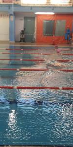 Centinaia di nuotatori di tutte l'età della Scuola Neysis di Cirò Marina per la gara di fine anno (113)