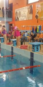 Centinaia di nuotatori di tutte l'età della Scuola Neysis di Cirò Marina per la gara di fine anno (116)