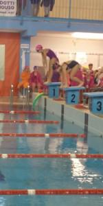 Centinaia di nuotatori di tutte l'età della Scuola Neysis di Cirò Marina per la gara di fine anno (126)