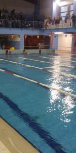 Centinaia di nuotatori di tutte l'età della Scuola Neysis di Cirò Marina per la gara di fine anno (128)