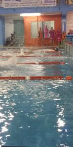 Centinaia di nuotatori di tutte l'età della Scuola Neysis di Cirò Marina per la gara di fine anno (130)