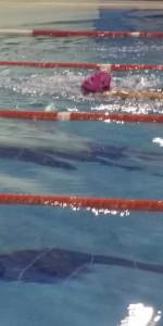 Centinaia di nuotatori di tutte l'età della Scuola Neysis di Cirò Marina per la gara di fine anno (135)