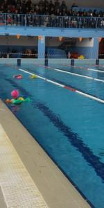 Centinaia di nuotatori di tutte l'età della Scuola Neysis di Cirò Marina per la gara di fine anno (39)