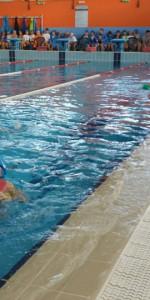 Centinaia di nuotatori di tutte l'età della Scuola Neysis di Cirò Marina per la gara di fine anno (41)
