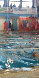 Centinaia di nuotatori di tutte l'età della Scuola Neysis di Cirò Marina per la gara di fine anno (52)