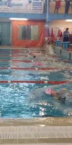 Centinaia di nuotatori di tutte l'età della Scuola Neysis di Cirò Marina per la gara di fine anno (59)