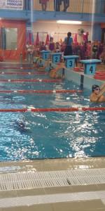 Centinaia di nuotatori di tutte l'età della Scuola Neysis di Cirò Marina per la gara di fine anno (63)