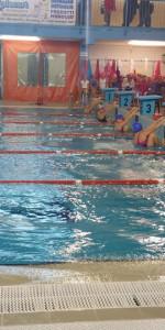 Centinaia di nuotatori di tutte l'età della Scuola Neysis di Cirò Marina per la gara di fine anno (66)