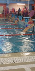 Centinaia di nuotatori di tutte l'età della Scuola Neysis di Cirò Marina per la gara di fine anno (69)