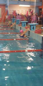 Centinaia di nuotatori di tutte l'età della Scuola Neysis di Cirò Marina per la gara di fine anno (72)