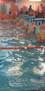 Centinaia di nuotatori di tutte l'età della Scuola Neysis di Cirò Marina per la gara di fine anno (76)