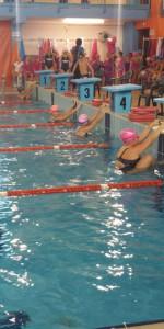 Centinaia di nuotatori di tutte l'età della Scuola Neysis di Cirò Marina per la gara di fine anno (79)